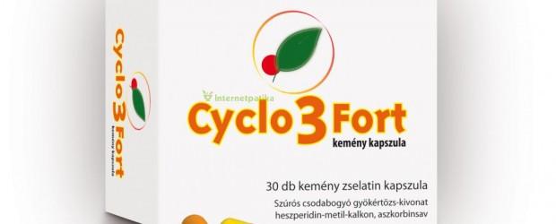 Цикло 3