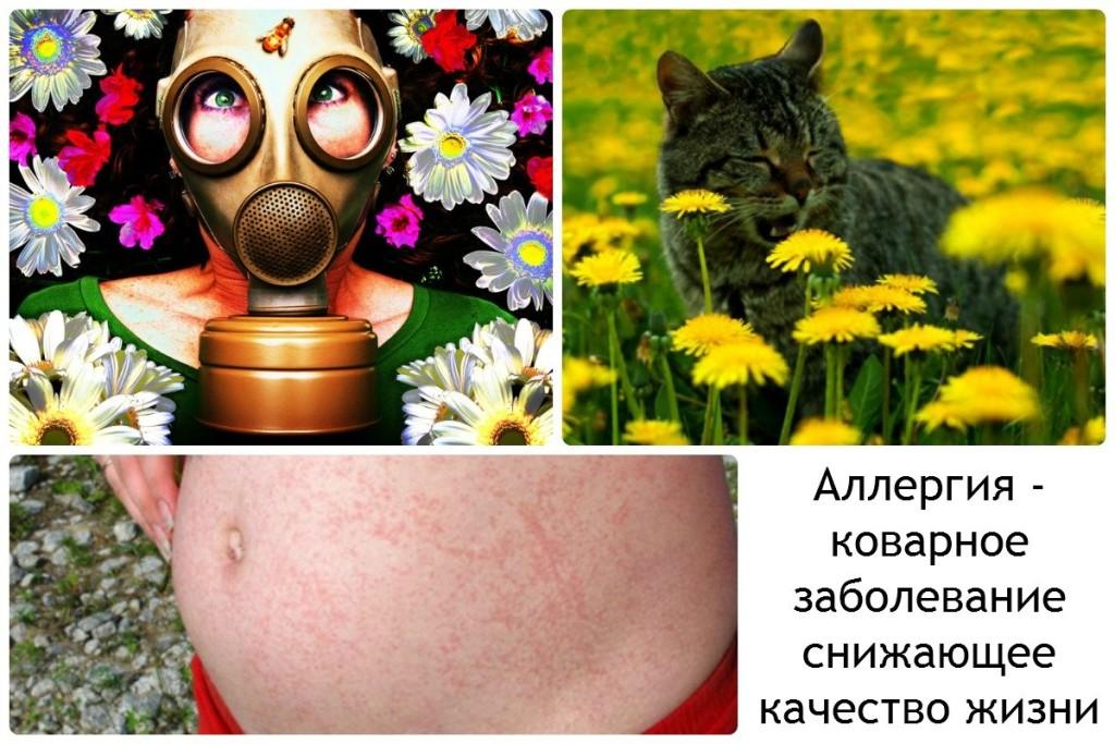 Аллергия - коварное заболевание снижающее качество жизни