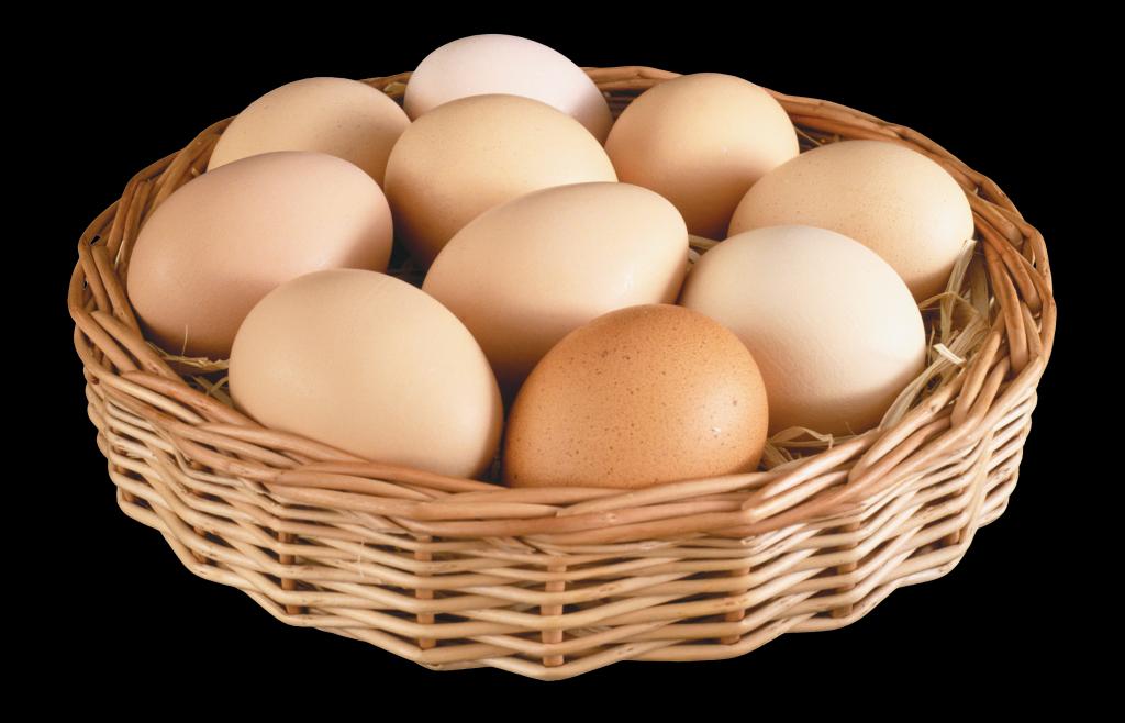 День английском, яйцо картинки для детей