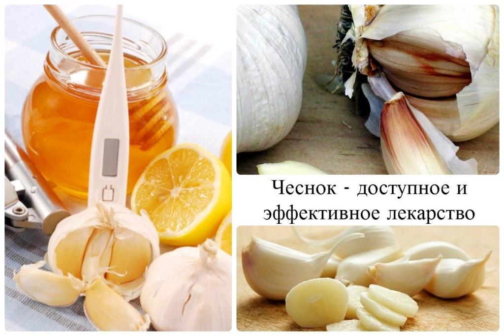 Чеснок - доступное и эффективное лекарство