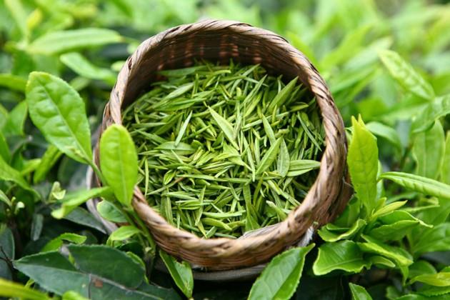 Свежий зеленый чай в корзинке