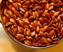 Семена льна: полезные свойства и применение