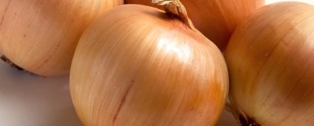 Onion / лук репчатый инструкция по применению, противопоказания, побочные эффекты, отзывы