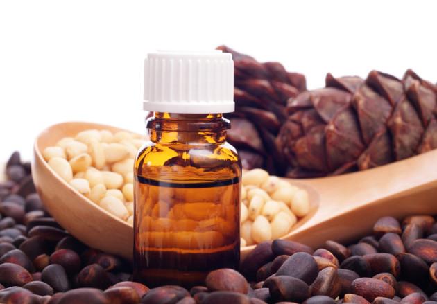Кедровые орехи и масло из них