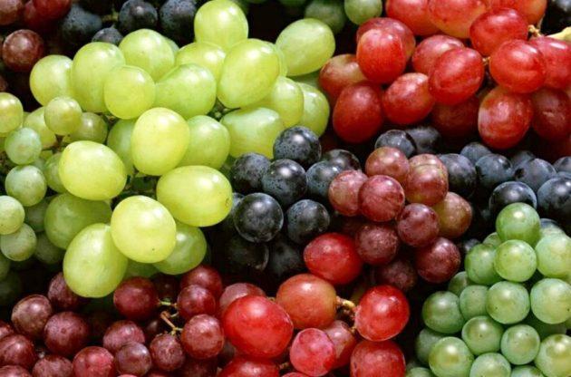 Виноград разных цветов