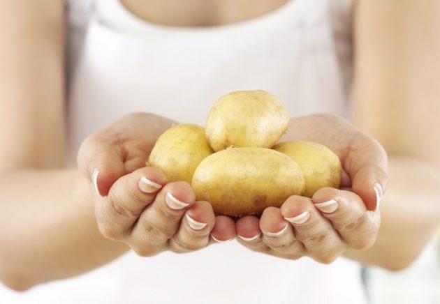Две руки держат пригоршню картофеля