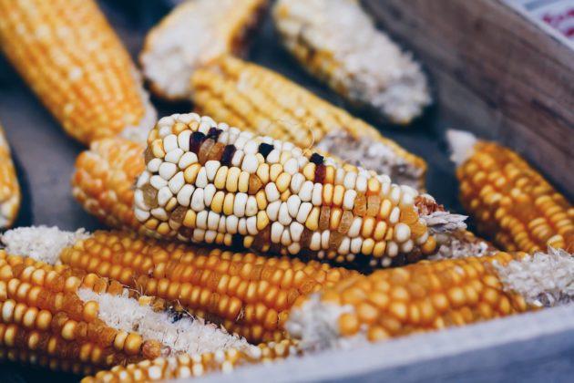 Некачественная кукуруза