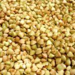 Зеленая гречка: полезная и вкусная