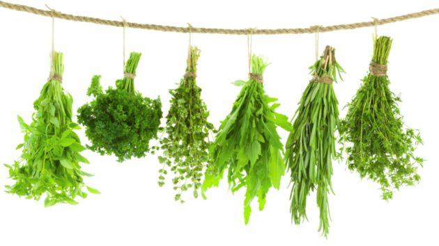 Чай с лекарственными травами