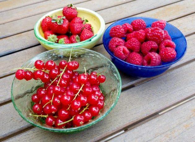 Красные ягоды
