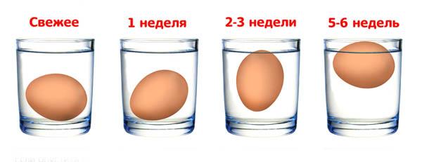 Отличие свежего яйца от несвежего