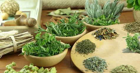 Различные лекарственные травы