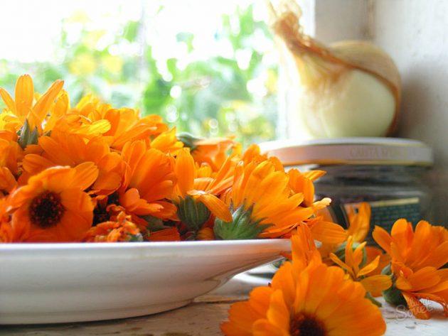 Цветы календулы на тарелке