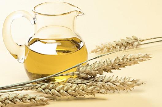 Колосья и масло пшеницы