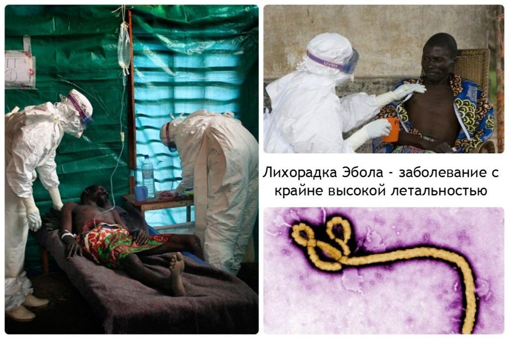 Лихорадка Эбола - заболевание с крайне высокой летальностью