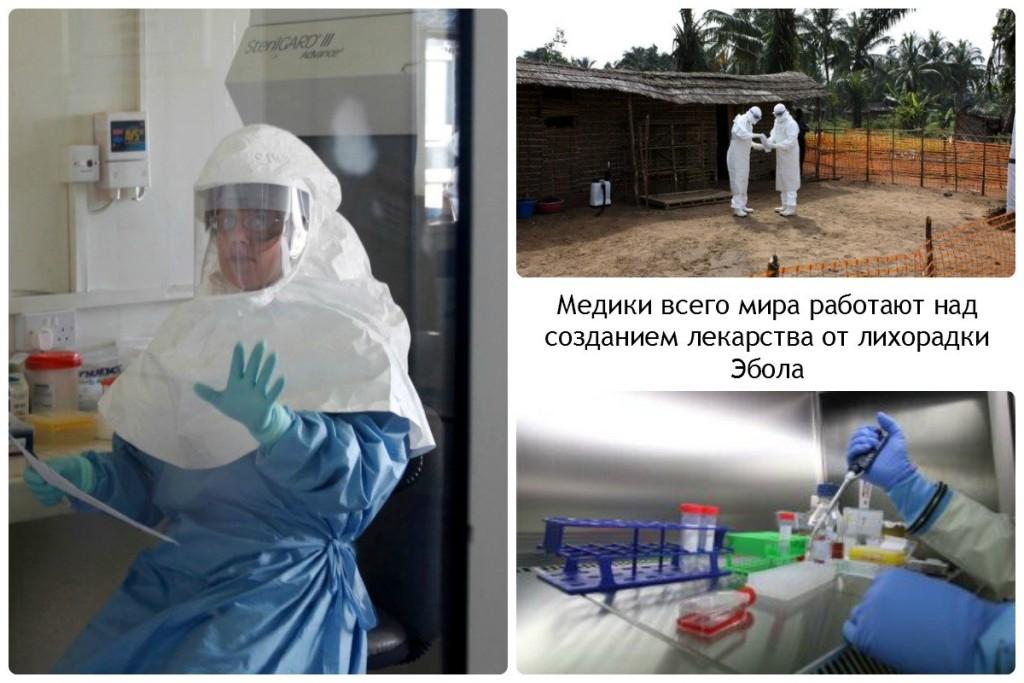 Медики всего мира работают над созданием лекарства от лихорадки Эбола