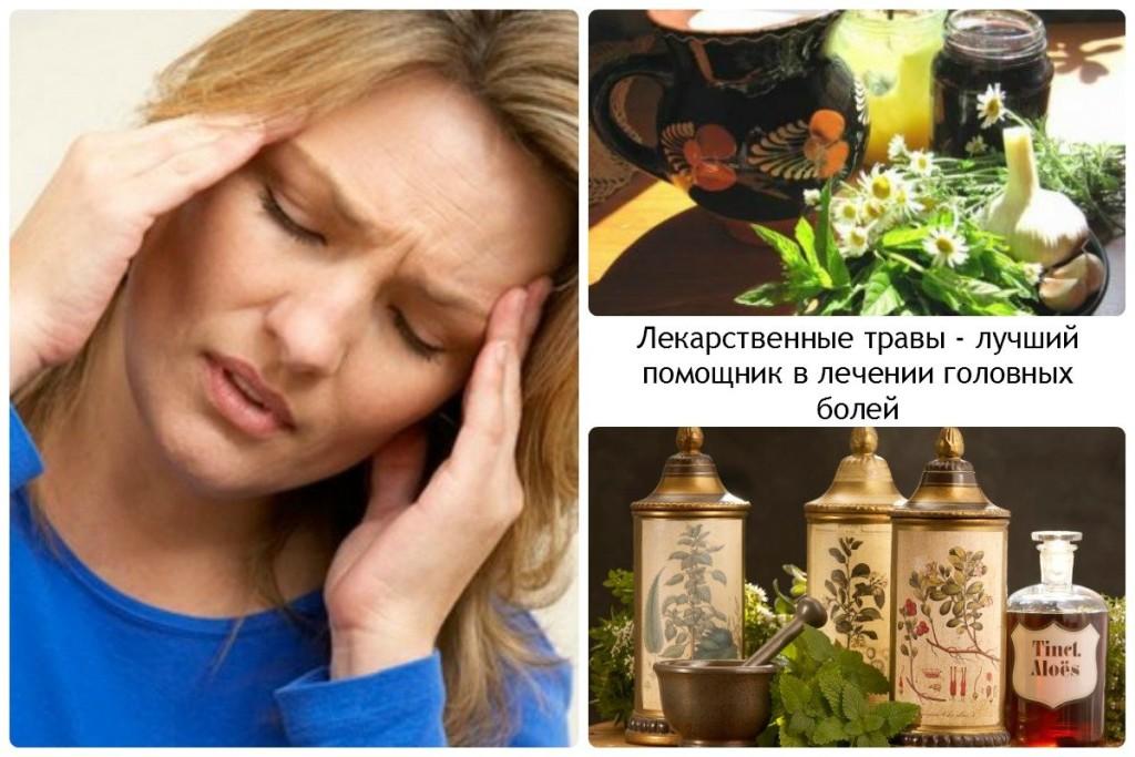 Лекарственные травы - лучший помощник в лечении головных болей