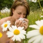 Аллергия – бич современности
