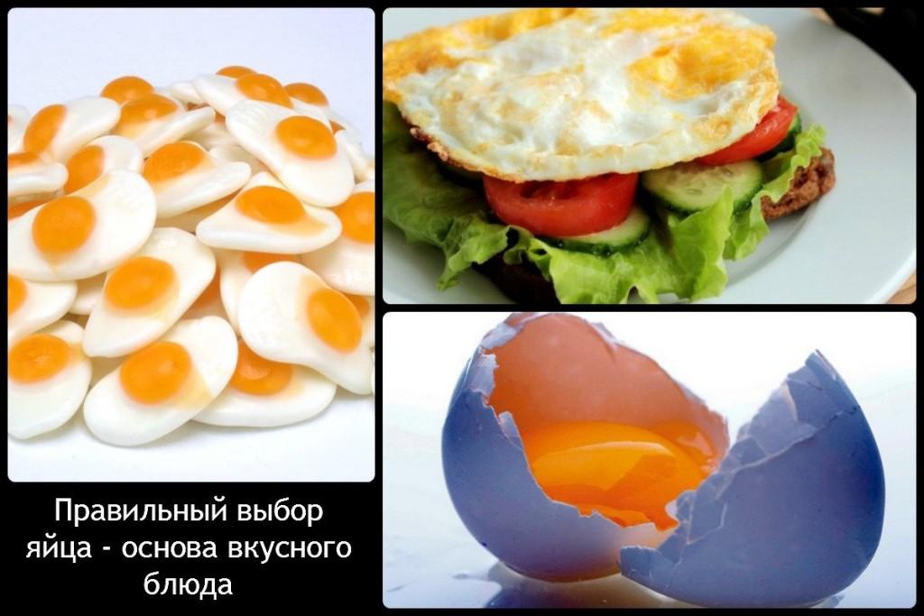 Правильный выбор яйца - основа вкусного блюда