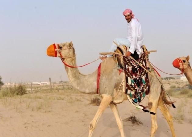 Человек на верблюде