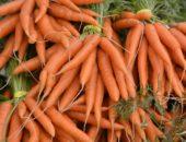 девушка и морковь