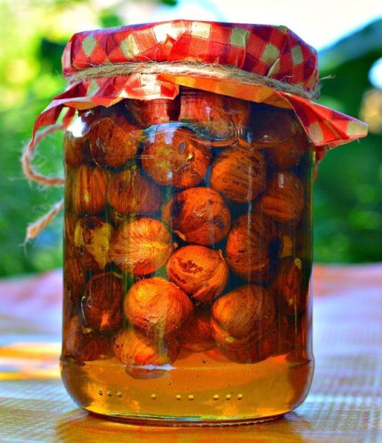 Фундук и мёд