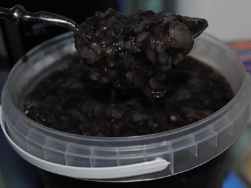Рецепт настойки трепанг на меду: ее применение и отзывы, фото