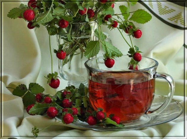 Обрезанная земляника с листьями и плодами, земляничный чай