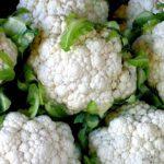 Цветная капуста – польза, противопоказания, рецепты для здоровья и красоты
