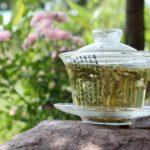 Белый чай — чем полезен напиток императоров