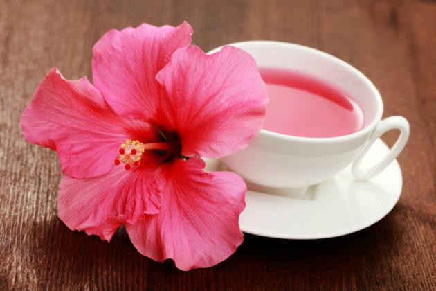 Цветок гибискуса и чайный напиток