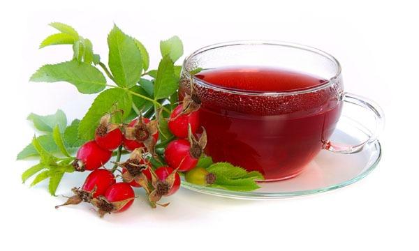 Чай из хвои с шиповником