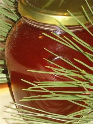 Мёд из сосновых почек