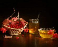 Калина и мед