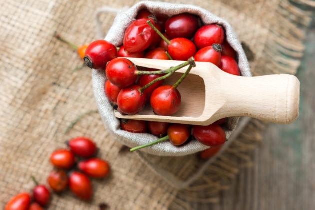 свежие плоды шиповника