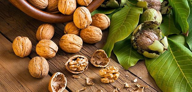 Орехи и листья