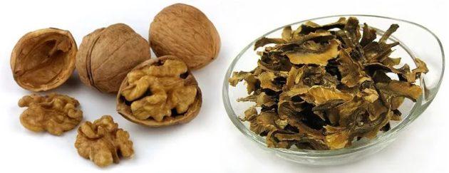 Орехи и отделённые перемычки