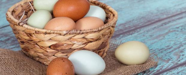 маска для волос из яиц и оливкового масла рецепты