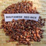 Зёрна бутанского красного риса