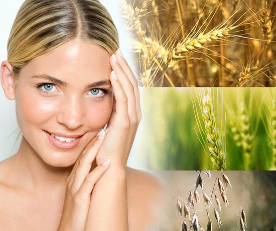 Красивая девушки и масло пшеницы