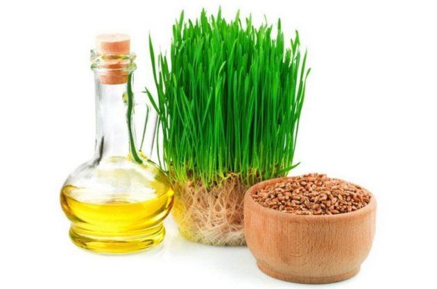 Пшеница, масло, зелёные ростки