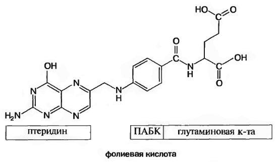 Схема строения молекулы фолиевой кислоты