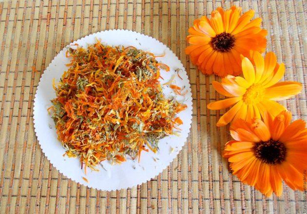 Сухие и свежие цветы календулы